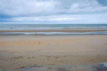 Wandelen op het strand van Johan Vanbockryck