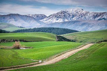 Alpen Nieuw Zeeland van Roel Beurskens