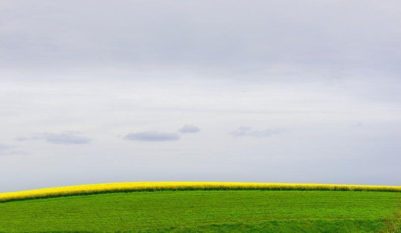 0943 French Field van Adrien Hendrickx