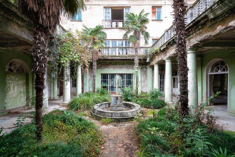 Verlaten Tuin met Palmbomen. van Roman Robroek