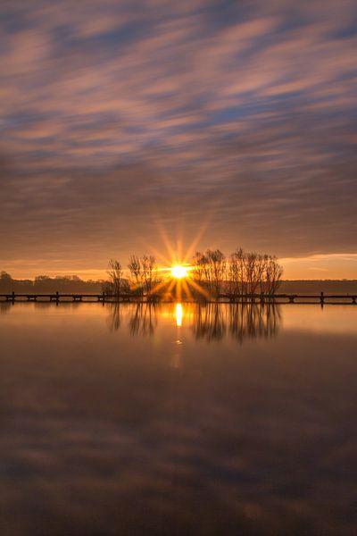 Sunstar 1 van Nuance Beeld