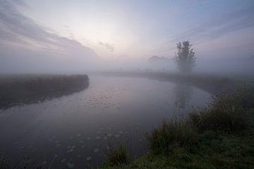 Ein nebeliger Morgen im Polder
