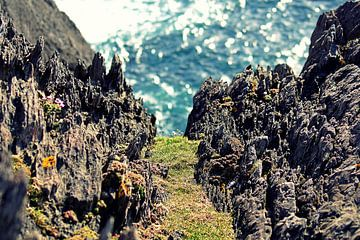 Bij Dursey Island, Ierland  van Elfriede de Jonge Boeree