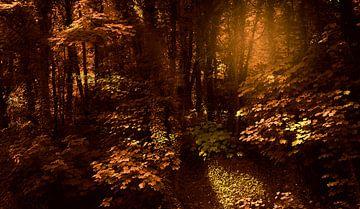 0393 Bronze forest van Adrien Hendrickx
