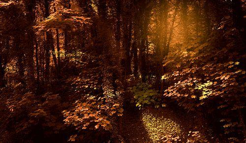 0393 Bronze forest