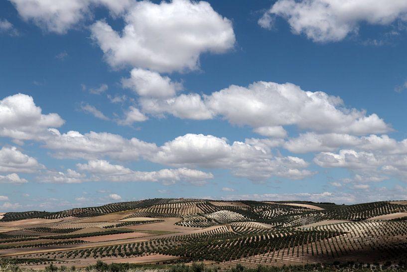 Wolken over Andalusie van jan katuin