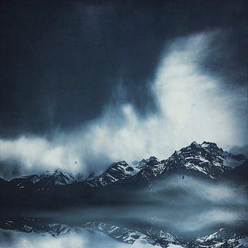 Blue Mountains van