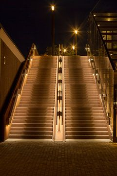 Bahnhofstreppe Palastbrücke 's-Hertogenbosch von Rob van Eerd
