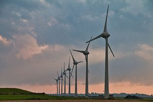 Windmolens in de Wieringerwaard