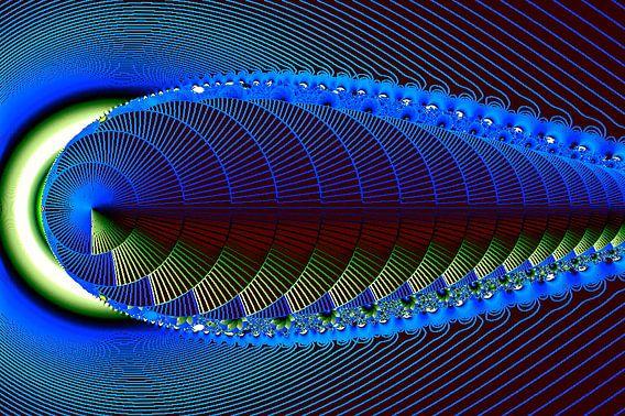 fractal (unica) van Frans Beer