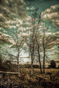 Surealistische boom van Freddy Hoevers