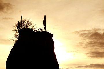 Silhouet in de Tatacoa woestijn in Colombia van Jessica Lokker