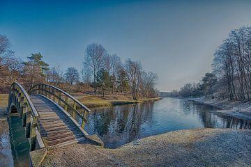 Winterdag in de Amsterdamse Waterleidingduinen van