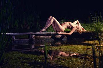 Sommernacht am Wasser von Allard Kamermans