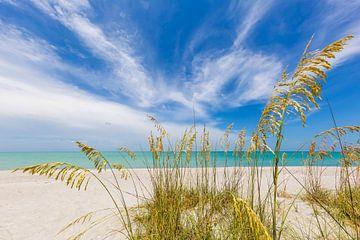 Hemelse stilte op het strand van Melanie Viola
