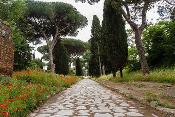 Via Appia Antica 03 van Marcel van der Voet