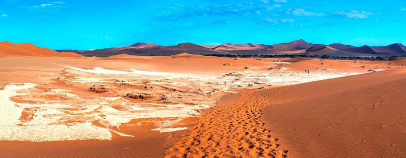 Sporen in het rode zand van de Sossusvlei naar de Deadvlei, Namibië van Rietje Bulthuis