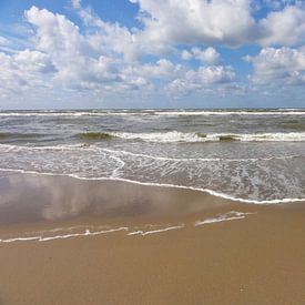 Vloed sur Lotte Veldt