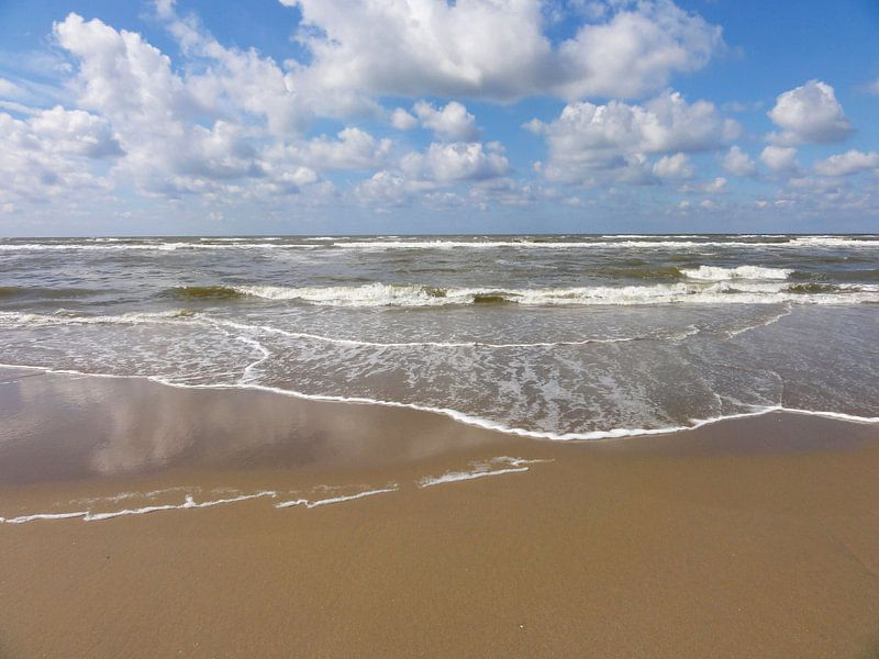 Vloed van Lotte Veldt