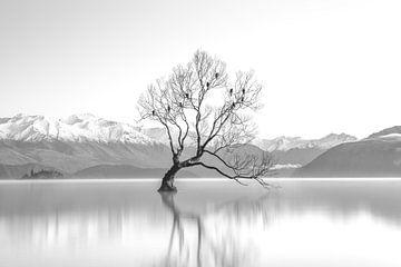 High Key Minimalistische Landschaft See mit Baum von Art By Dominic
