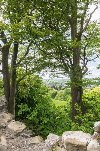 Kendall Cumbria, from Kendall Castle van
