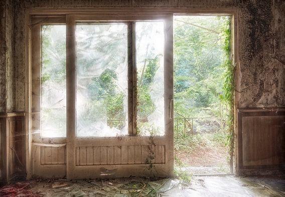 Bos in tegenlicht door schuifpui van Marcel van Balken