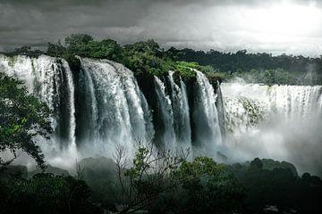 Iguazu waterval   Brazilië van Felix Van Leusden