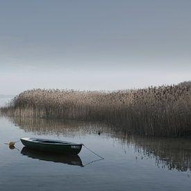 Boat on the Lakeshore von Lena Weisbek