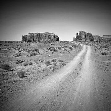 Monument Valley Drive n/b sur Melanie Viola