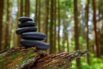 Balance von Jürgen Wiesler