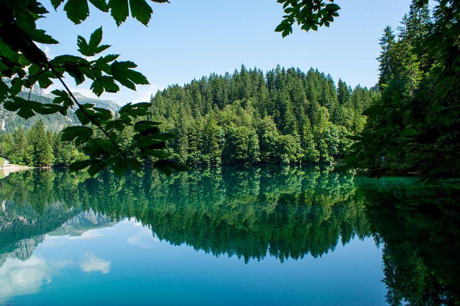 Lago di Tovel van Jeroen van Deel
