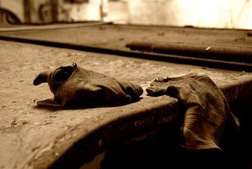 Forgotten Gloves van Erik Bravenboer