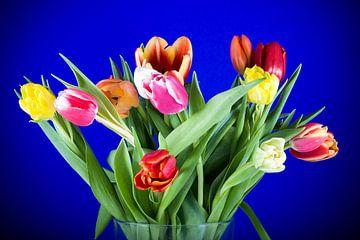 Frühlingsstrauss von Angelika Stern