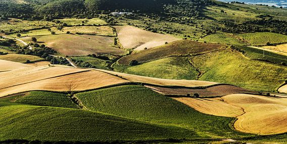 Landschap Andalucié nabij Vejer van Harrie Muis