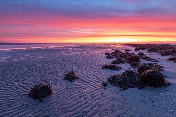 Farbenfroher Sonnenaufgang - Natürliches Ameland von Anja Brouwer Fotografie