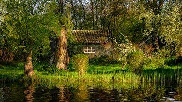 Old Cabin van Arnoud van de Weerd