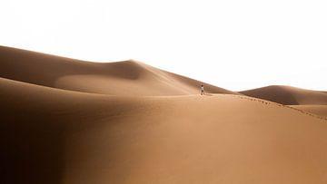 Sahara °13 von Jesse Barendregt