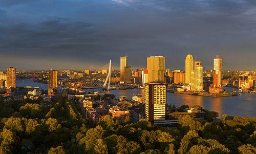 Laatste zonlicht over de mooie skyline van Rotterdam van