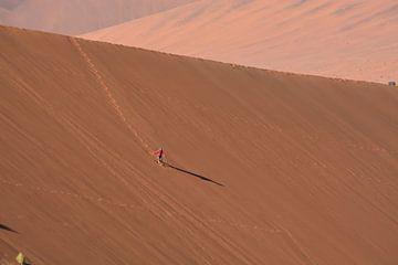 Zandduinen in Namibië van