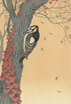 Grand pic tacheté dans un arbre avec du lierre rouge de Ohara Koson