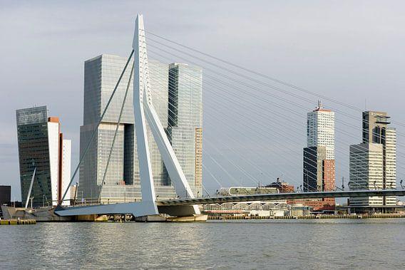 Architectuur op de Rotterdamse Wilhelminapier