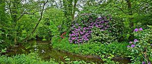 Spring Idyll in the Public Park of Soltau