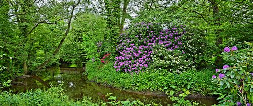 Spring Idyll in the Public Park of Soltau van Gisela Scheffbuch