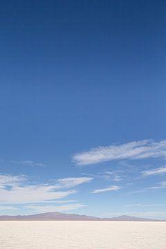 Zoutvlakte Salta II van Merijn Geurts