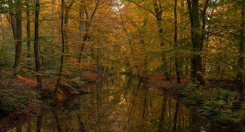 Herfst weerspiegeling van Joris Pannemans - Loris Photography