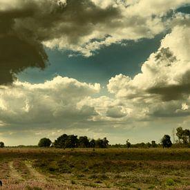 Heidelandschap op een zomerse dag van Erna Böhre
