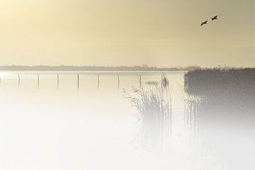 Dutch landscape von Michelle Zwakhalen