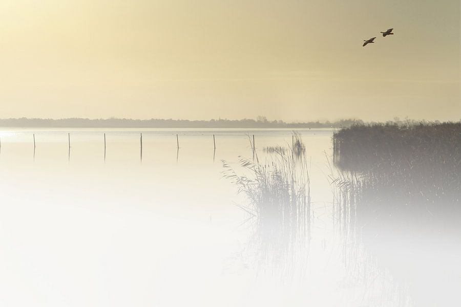 Dutch landscape van Michelle Zwakhalen