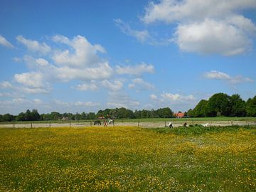 Hollands landschap van Joke te Grotenhuis