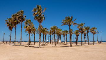 Strand Valencia von Arno Litjens